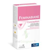 Pileje Feminabiane Conception 30 Comprimés Et 30 Capsules à VINEUIL