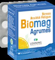 Lehning Biomag Comprimés à Croquer Agrumes B/90 à VINEUIL