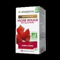 Arkogélules Vigne Rouge Bio Gélules Fl/45 à VINEUIL