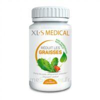 Xls Médical Réduit Les Graisses B/150 à VINEUIL
