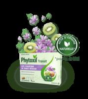 Phytoxil Transit Comprimés B/20 à VINEUIL