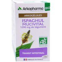 Arkogélules Ispaghul Mucivital Bio Gélules Fl/150 à VINEUIL