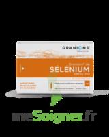 Granions De Selenium 0,96 Mg/2 Ml S Buv 30amp/2ml à VINEUIL