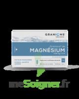 Granions De Magnesium 3,82 Mg/2 Ml S Buv 30amp/2ml à VINEUIL