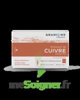Granions De Cuivre 0,3 Mg/2 Ml S Buv 30amp/2ml à VINEUIL