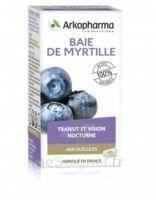 Arkogélules Myrtille Baies Gélules Fl/45 à VINEUIL