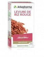 Arkogélules Levure De Riz Rouge Gélules Fl/150 à VINEUIL
