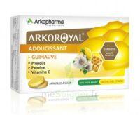 Arkoroyal Propolis Pastilles Adoucissante Gorge Guimauve Miel Citron B/24 à VINEUIL