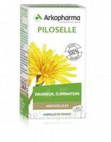 Arkogélules Piloselle Gélules Fl/45 à VINEUIL
