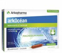 Arkocean Magnesium Marin Solution Buvable Caramel 20 Ampoules/10ml à VINEUIL