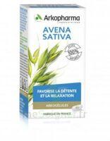 Arkogélules Avena Sativa Gélules Fl/45 à VINEUIL