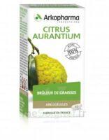Arkogélules Citrus Aurantium Gélules Fl/45 à VINEUIL