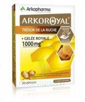 Arkoroyal Gelée Royale 1000 Mg Caps B/30 à VINEUIL