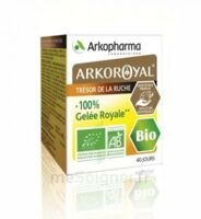 Arkoroyal 100% Gelée Royale Bio Gelée Pot/40g à VINEUIL