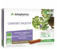 Arkofluide Bio Ultraextract Solution Buvable Confort Digestif 20 Ampoules/10ml