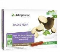 Arkofluide Bio Ultraextract Radis Noir Solution Buvable 20 Ampoules/10ml à VINEUIL