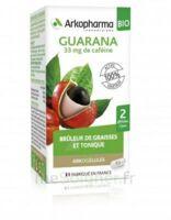 Arkogélules Guarana Bio Gélules Fl/45 à VINEUIL
