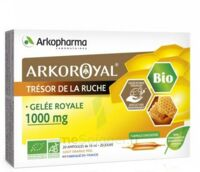 Arkoroyal Gelée Royale Bio 1000 Mg Solution Buvable 20 Ampoules/10ml à VINEUIL