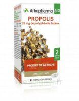 Arkogélules Propolis Bio Gélules Fl/45 à VINEUIL