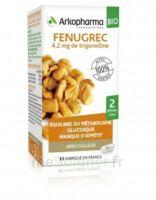 Arkogélules Fenugrec Bio Gélules Fl/40 à VINEUIL