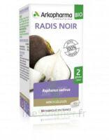 Arkogélules Radis Noir Bio Gélules Fl/40 à VINEUIL