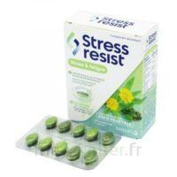 Stress Resist Comprimés Stress & Fatigue B/30 à VINEUIL