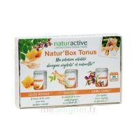 Naturactive Phytotherapie Box Tonus à VINEUIL