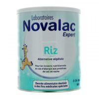 Novalac Expert Riz Lait En Poudre 0-36mois B/800g à VINEUIL