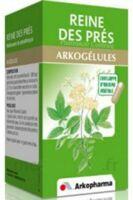 Arkogelules Reine Des Prés Gélules Fl/45 à VINEUIL