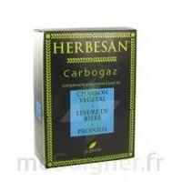 Herbesan Carbogaz, Bt 45 à VINEUIL