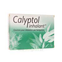 Calyptol Inhalant, émulsion Pour Inhalation Par Fumigation à VINEUIL