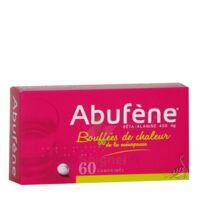 Abufene 400 Mg Comprimés Plq/60 à VINEUIL