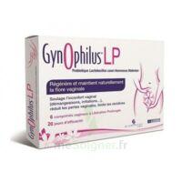 Gynophilus Lp Comprimés Vaginaux B/6 à VINEUIL
