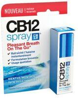 Cb 12 Spray Haleine Fraîche 15ml à VINEUIL