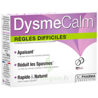 Dysmecalm Comprimés B/15 à VINEUIL
