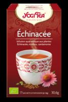 Yogi Tea Echinacee à VINEUIL