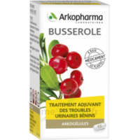 Arkogelules Busserole Gélules Fl/45 à VINEUIL