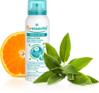 Puressentiel Circulation Spray Tonique Express Circulation - 100 Ml à VINEUIL