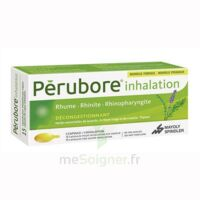 Perubore Caps Inhalation Par Vapeur Inhalation Plq/15 à VINEUIL