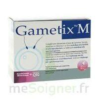 Gametix M, Bt 30 à VINEUIL