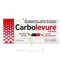 Carbolevure Gélules Adulte Plq/30 à VINEUIL