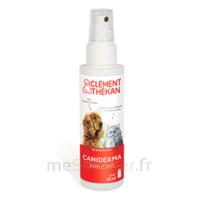 Clément Thékan Caniderma Solution Externe Cicatrisant Spray/125ml à VINEUIL