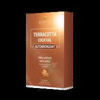 Terracotta Cicktail Autobronzant Comprimés B/30 à VINEUIL