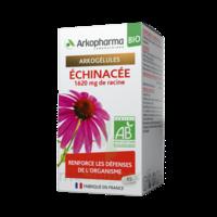Arkogelules Echinacée Bio Gélules Fl/45 à VINEUIL