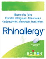 Boiron Rhinallergy Comprimés B/40 à VINEUIL