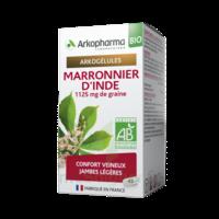 Arkogélules Marronnier D'inde Bio Gélules Fl/45 à VINEUIL