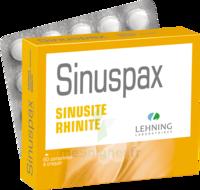 Lehning Sinuspax Comprimés à Croquer 3plq/20 à VINEUIL