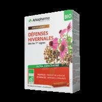 Arkofluide Bio Ultraextract Solution Buvable Défenses Hivernales 20 Ampoules/10ml à VINEUIL