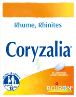 Boiron Coryzalia Comprimés Orodispersibles à VINEUIL