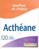 Boiron Acthéane Comprimés B/120 à VINEUIL